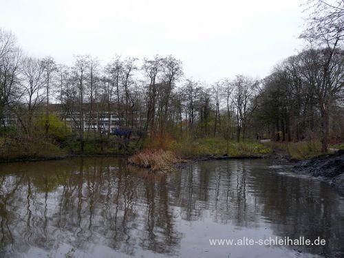 Mühlenteich Schleswig