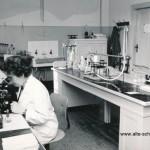 Labor um 1966